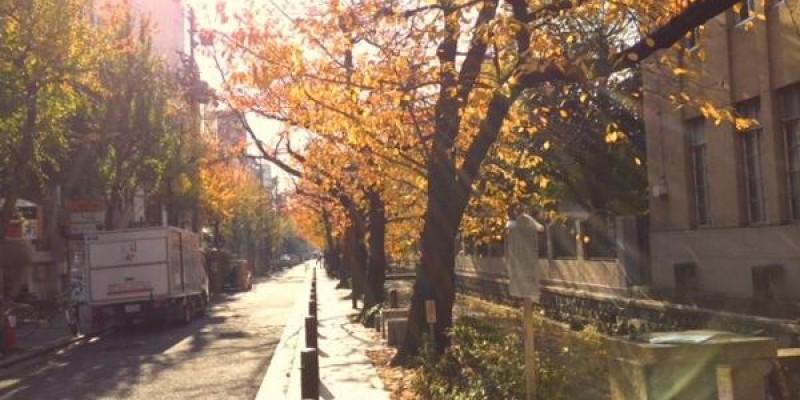 シネマカレッジ京都